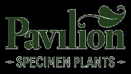 Pavilion Specimen Plants Logo